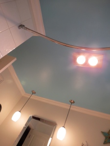 bathroom ceiling 2
